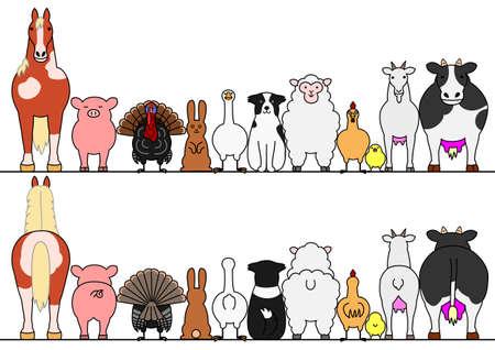 Photo pour farm animals in a row, front and back - image libre de droit