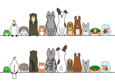 Pet animals in line, front and back
