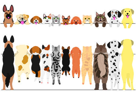 Illustration pour Standing dogs and cats front and back border set illustration. - image libre de droit