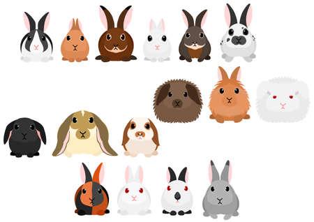Illustrazione per Different kinds of rabbits border set - Immagini Royalty Free