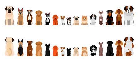 Ilustración de small and large dogs border border set, full length, front and back - Imagen libre de derechos