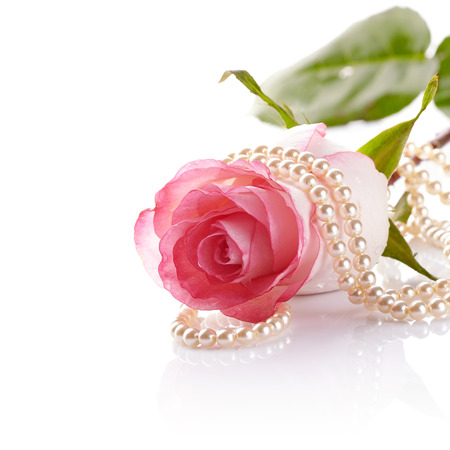 Foto de Pink rose. Rose on a white background. Pink flower. Pink rose and pearl beads. - Imagen libre de derechos