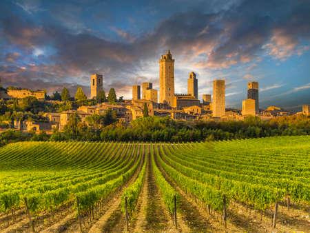 Photo pour Vineyards of San Gimignano, Tuscany, Italy - image libre de droit