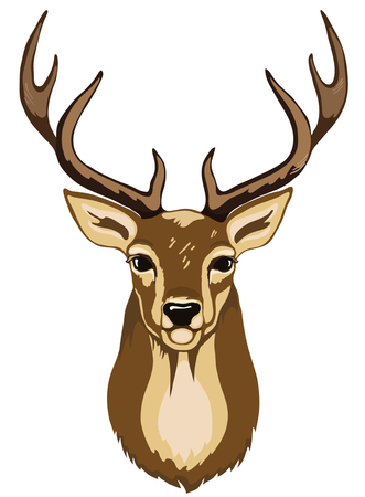 Illustration for Portrait of wild deer with antlers brown color. - Royalty Free Image