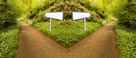 Foto de Conceptual photo of fork in forest path to illustrate making a choice or hard decision. Choose which direction to take at intersection - Imagen libre de derechos