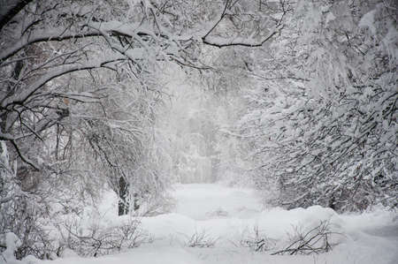 Foto de long road in the snow - Imagen libre de derechos