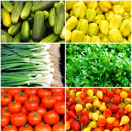Plenty of vegetables collage