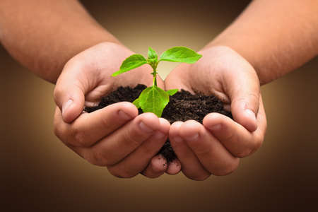 Photo pour Green plant in a child hands on dark background - image libre de droit
