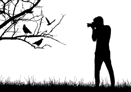 Illustration pour A young man in nature photographing birds sitting on tree branch - vector - image libre de droit