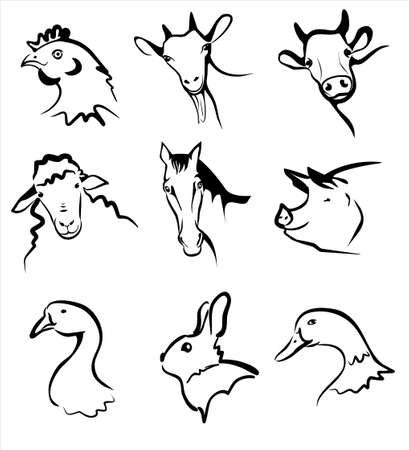 Illustration for farm animals collection of symbols in simple black lines  - Royalty Free Image