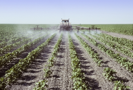 Foto de Crop sprayer spraying young cotton plants in a field in the San Joaquin Valley, California - Imagen libre de derechos