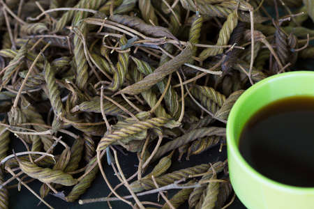 East Indian screw tree Helicteres isora L ,bring to boil and drink can have a bitter taste similar to tea