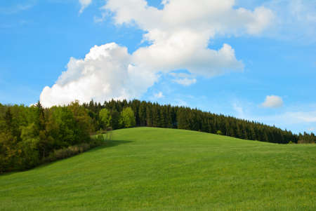 Photo pour Green Field and forest Hill with blue sky - image libre de droit