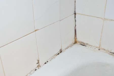 Photo pour Mold and scale on old bathroom walls - image libre de droit