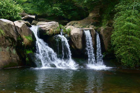 Photo for Deep forest Waterfall - Royalty Free Image