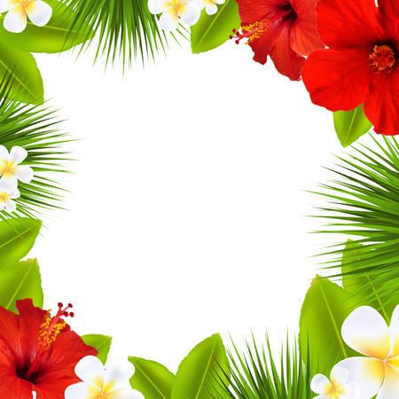 Illustration pour Tropical Border, With Gradient Mesh, Vector Illustration - image libre de droit
