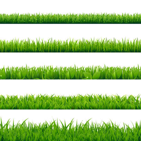 Illustration pour Grass Big Set, Vector Illustration - image libre de droit