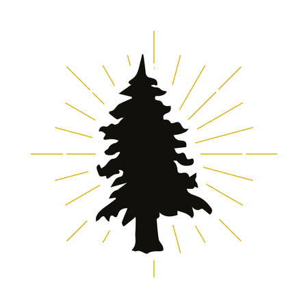 Retro fir silhouette logo. Park sign and vintage logotype. Tree icon. Ecology symbol. Vector illustration.