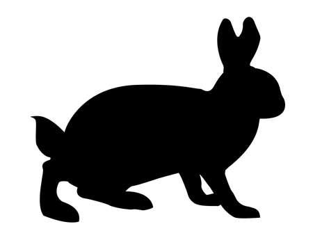 illustration hare on white background