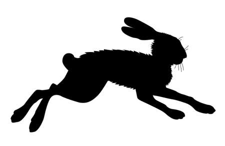 hare silhouette on white background, vector illustration