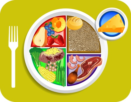 Vector illustration of Dinner items for the new my plate replacing food pyramid.