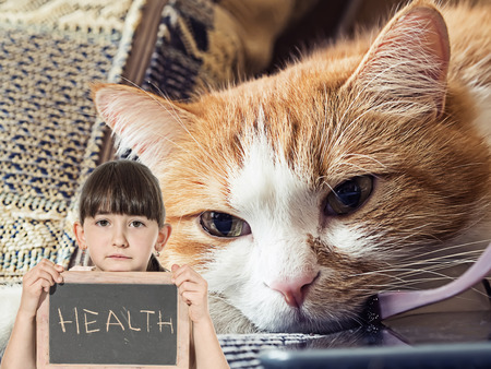Caucasian little girl hold chalkboard signed health with sick sad red cat lying at home