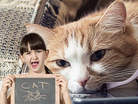 Caucasian little girl hold chalkboard signed cat with sick sad red cat lying at home