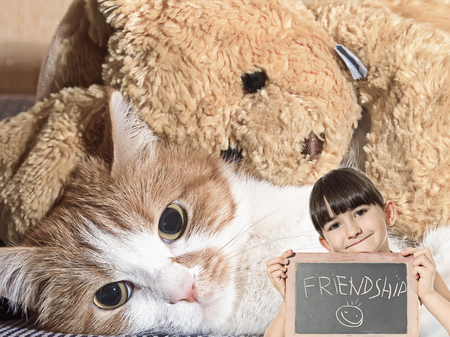 Caucasian little girl hold chalkboard signed friendship with red cat lying with rabbit toy