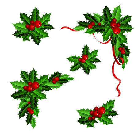 Illustration for Decorative elements with Christmas holly set isolated - Royalty Free Image