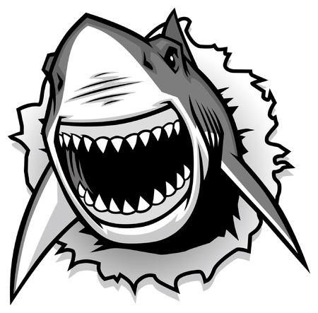 Ilustración de great white shark - Imagen libre de derechos