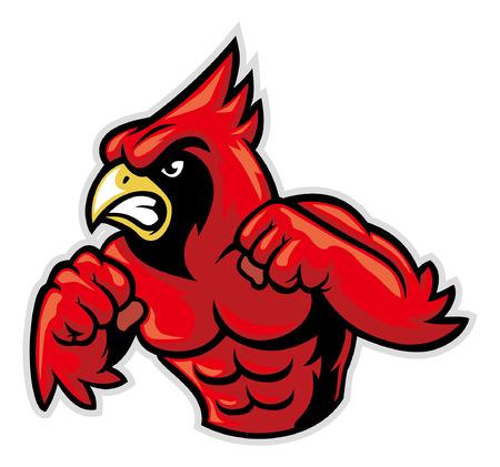 Illustrazione per angry cardinal mascot ready to fight - Immagini Royalty Free