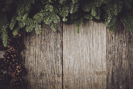 Foto de Tree branch on rustic wooden background  with pine cones - Imagen libre de derechos