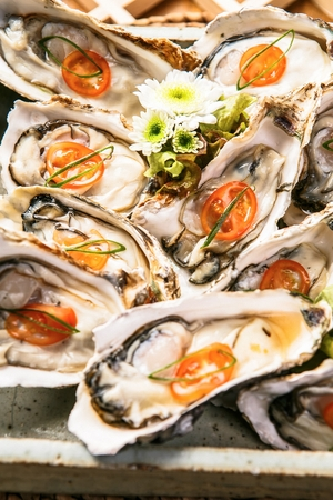 Photo for fresh oyster with sliced tomato - Royalty Free Image