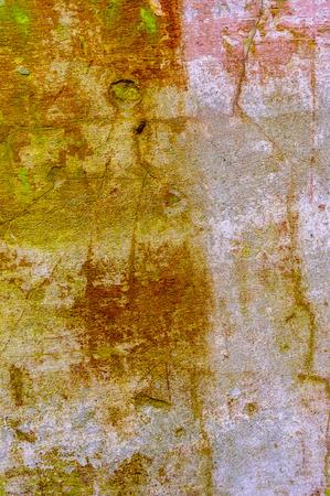 Foto de Color abstract wall texture for design. Place for text. Cracks and paint. Classic background. - Imagen libre de derechos