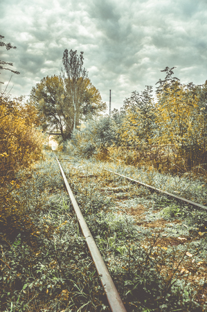 Photo for Old overgrown railway in autumn. - Royalty Free Image