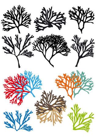 corals reefs set, vector design elements