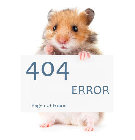 Photo for Little hamster keeps paws white poster 404 error - Royalty Free Image
