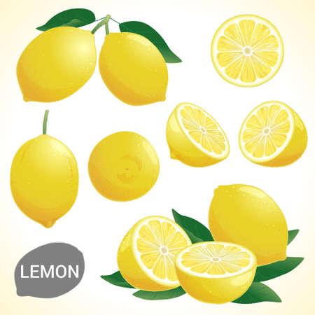 Ilustración de Set of fresh yellow lemon in various styles vector format - Imagen libre de derechos
