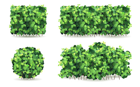 Ilustración de Set of bushes of different shapes on a white background isolated, stylized vector illustration. - Imagen libre de derechos