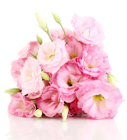 Photo for bouquet of eustoma flowers, isolated on white - Royalty Free Image