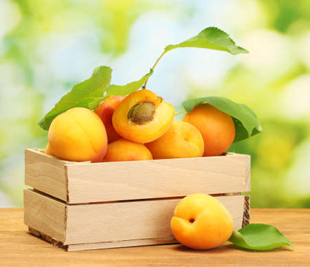 Photo for ripe apricots with leaves in wooden box on wooden table on green background - Royalty Free Image