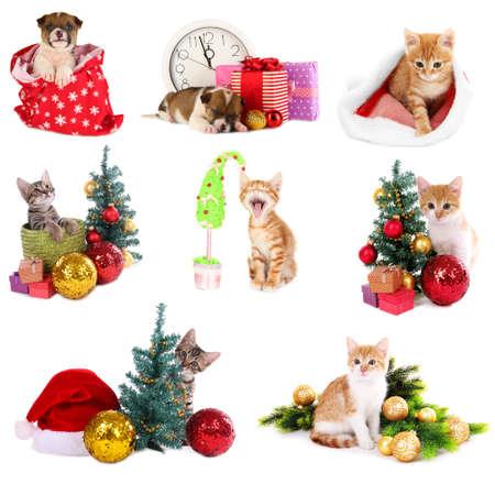 Christmas animals isolated on white