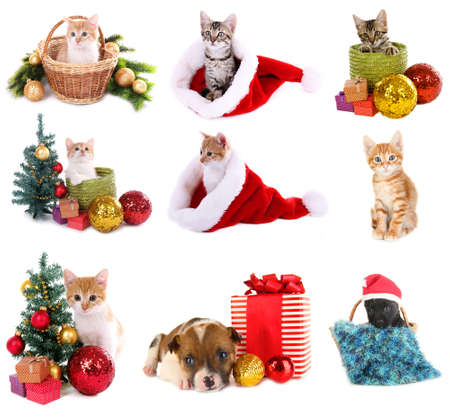 Christmas animals isolated on white