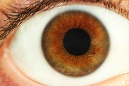 Foto de Human eye close-up - Imagen libre de derechos