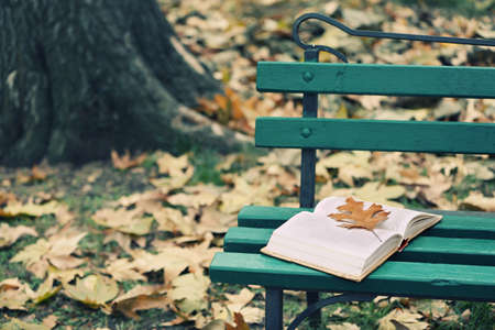 Photo for Open book with leaf lying on the bench in autumn park - Royalty Free Image