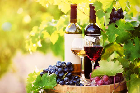 Photo pour Tasty wine on wooden barrel on grape plantation background - image libre de droit
