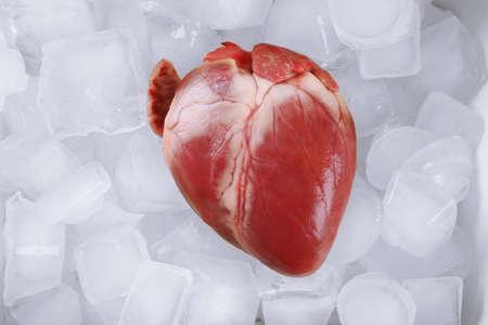 Foto de Heart organ with ice close up - Imagen libre de derechos