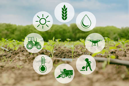 Photo pour Icons and field on background. Concept of smart agriculture and modern technology - image libre de droit