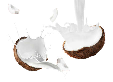 Photo for Coconut and milk splashes on white background - Royalty Free Image