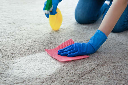 Foto de Cleaning service concept. Woman cleaning carpet with detergent and rag, closeup - Imagen libre de derechos